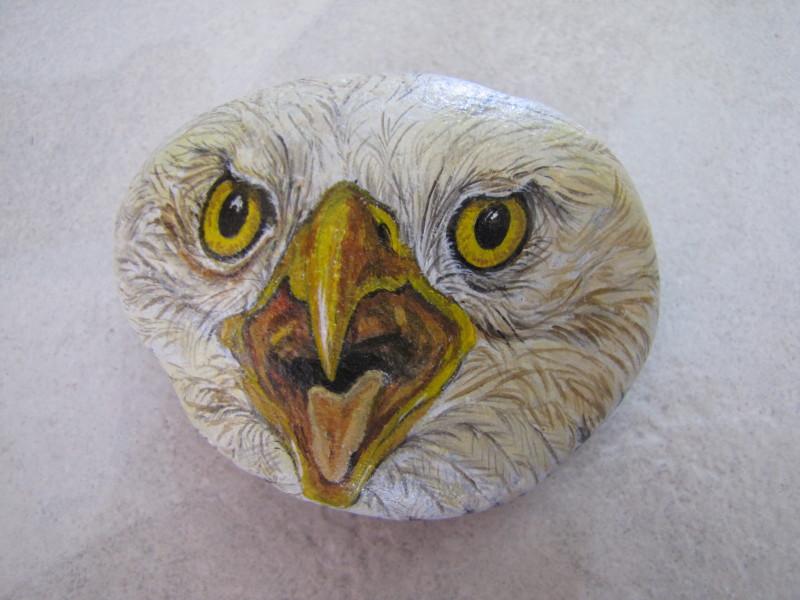 sassi dipinto : Sassi Dipinti Picture